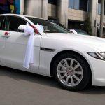 jaguar biały ślub